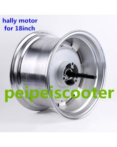 18inch 18 inch Stronger power 800w-1200w BLDC brushless non-gear hally hub wheel motor for scooter phub-183
